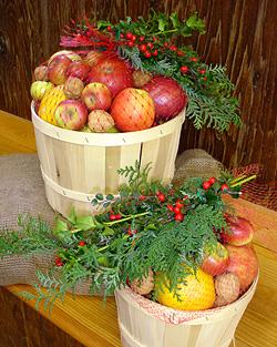 Fruit Basket1