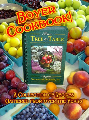 cookbook_picture